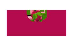 Logo unseres Partners Unverschwendet